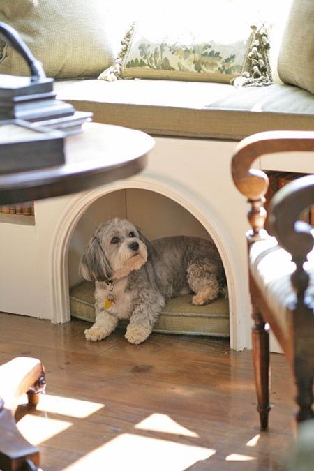 pet friendly singpaore interior design